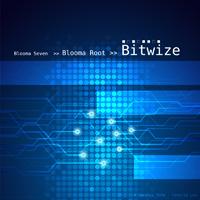 Bitwize --- 2013